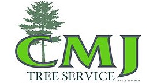 dutchess county ny tree service